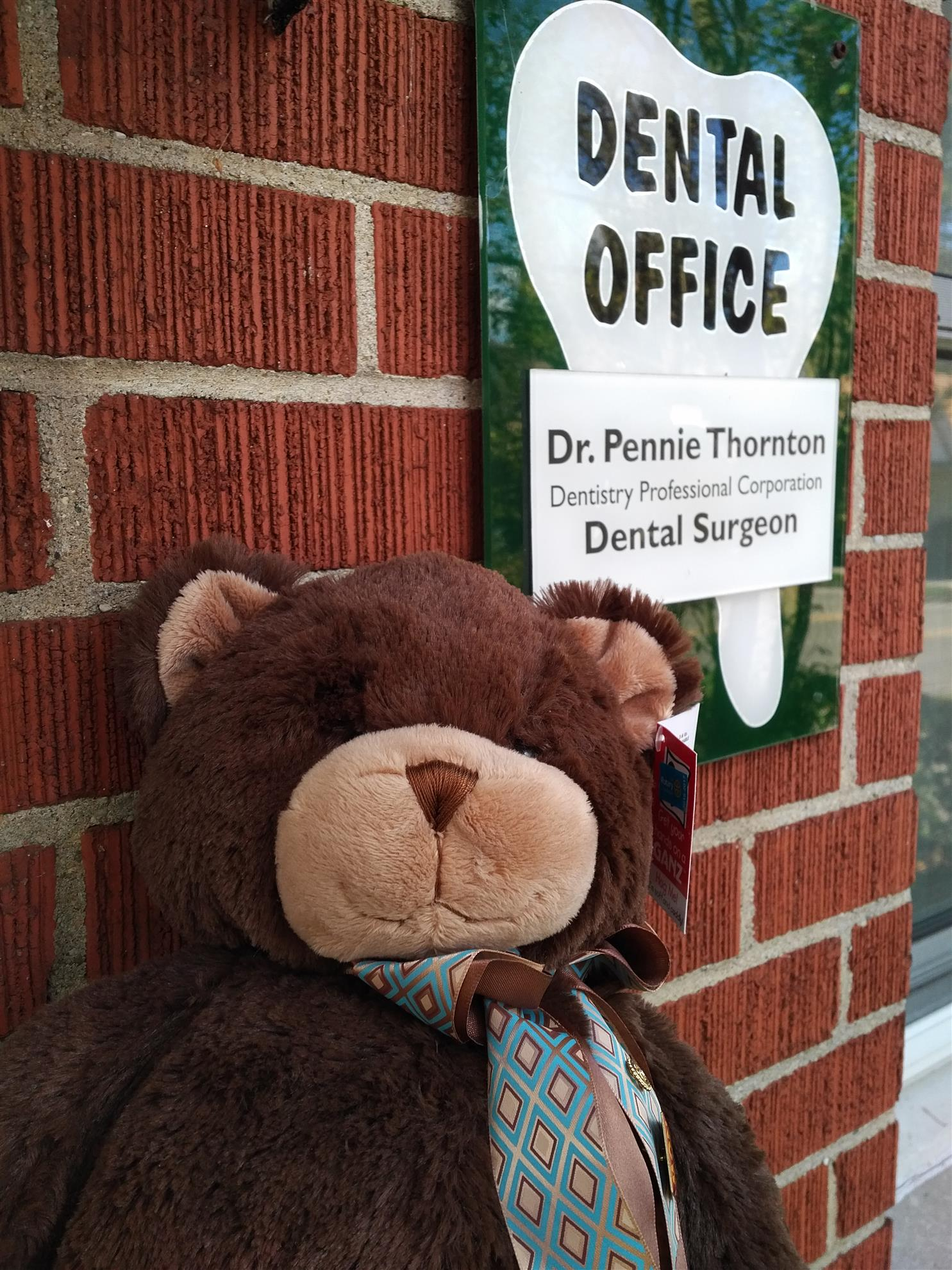07. LHP Visits the Dentist