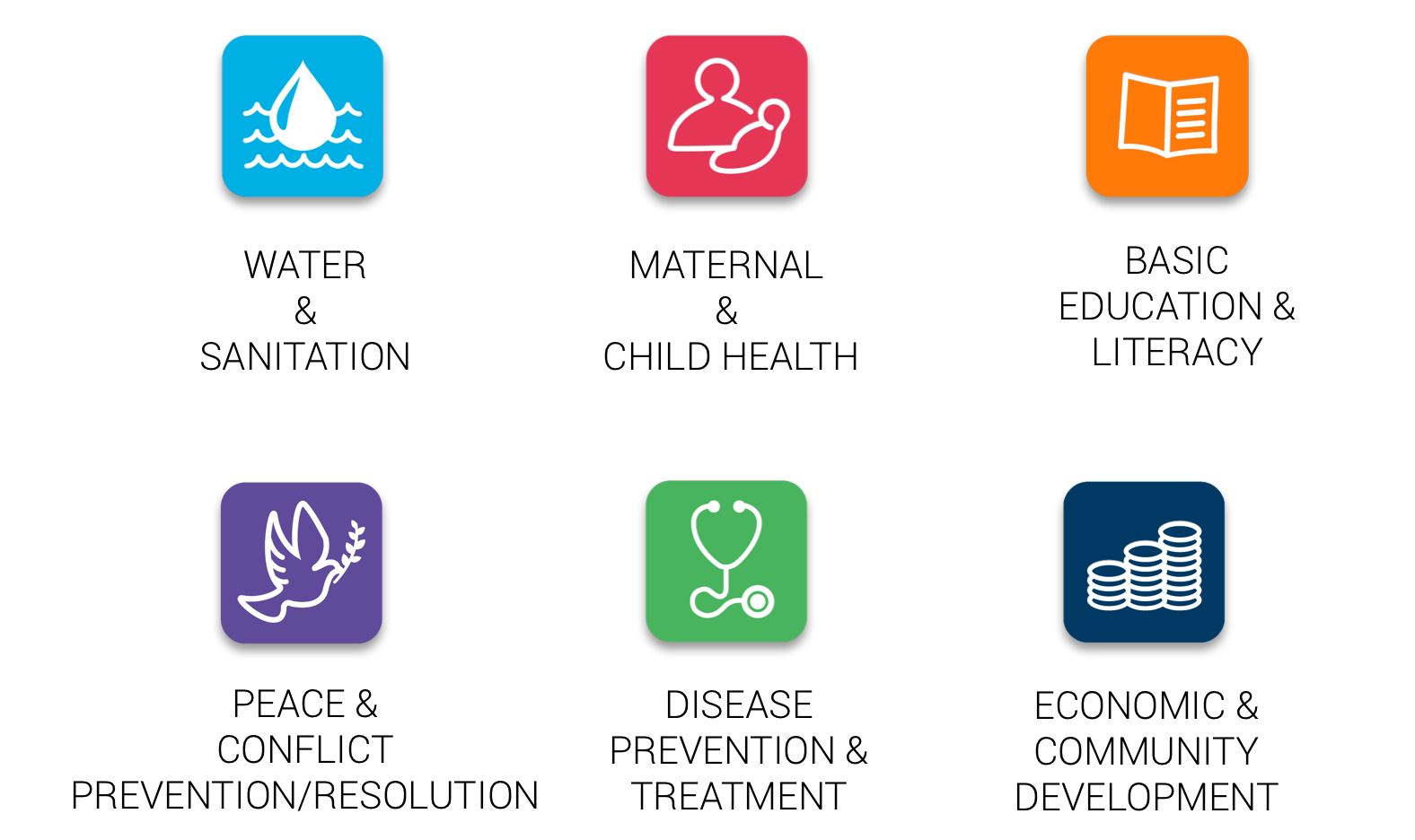 Rotary's Areas of Focus