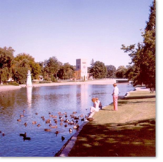 Downtown Simcoe Park