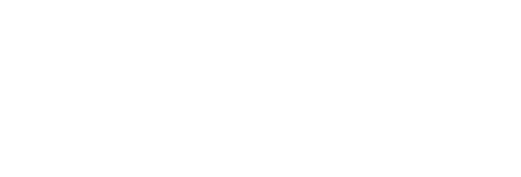 Lockport logo