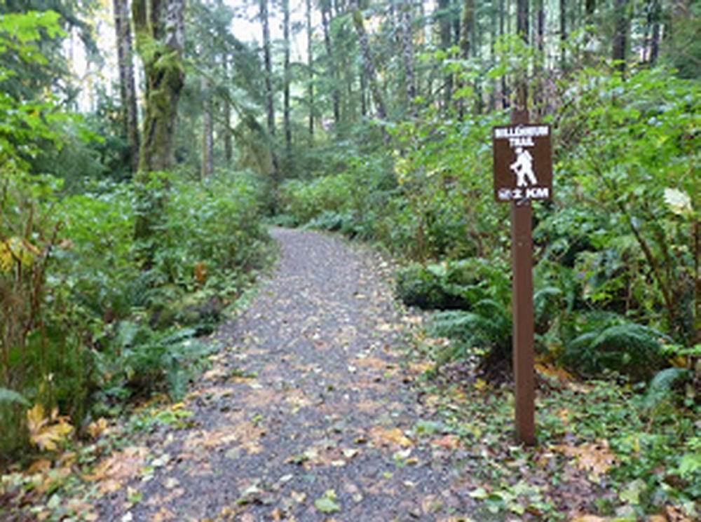 Various Trails