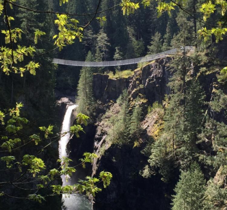 Elk Falls Suspension Bridge