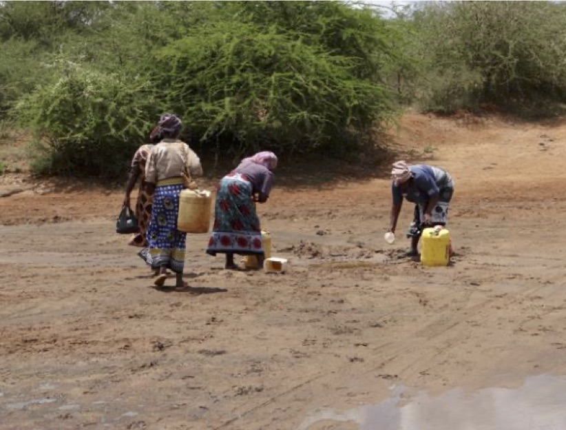 Women searching for water
