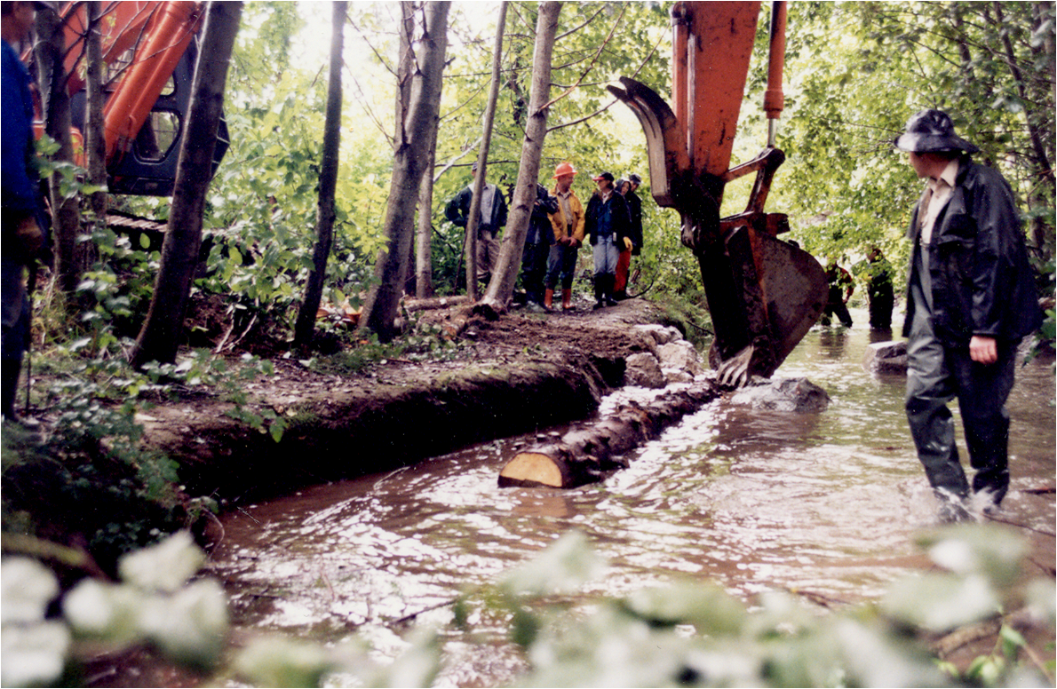 Crabapple Creek stream restoration