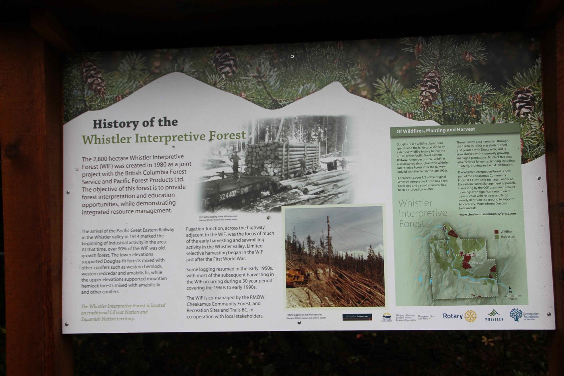 Don MacLaurin Interpretive Forest signs