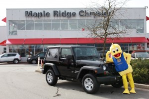Ducking around at Maple Ridge Chrysler!