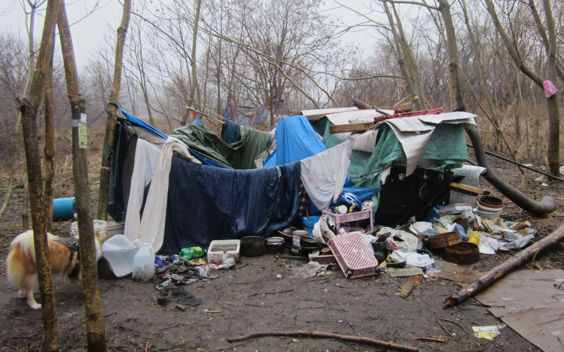 Homeless camp on Don Valley in Toronto