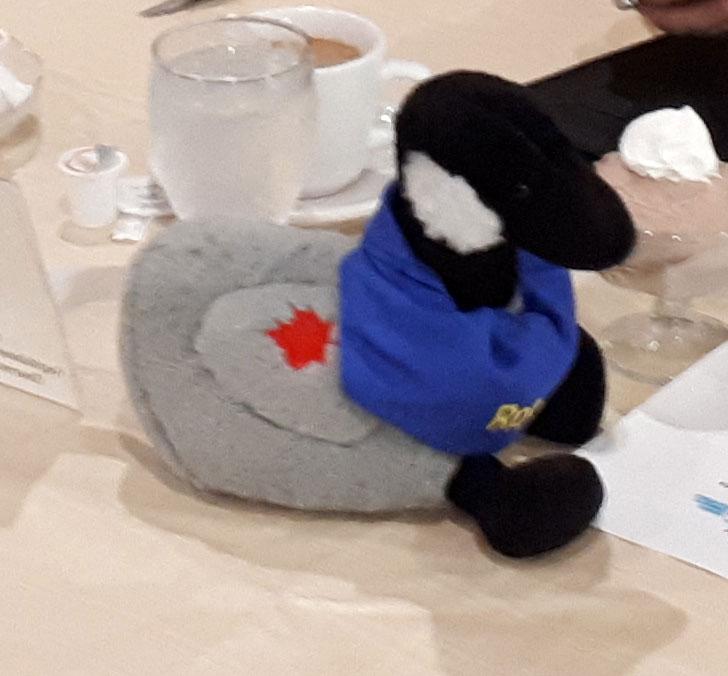 Rotary Goose