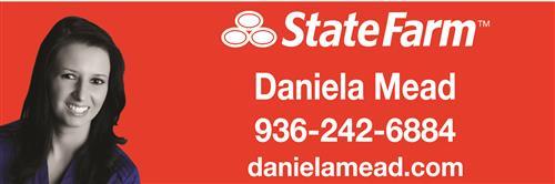 State Farm - Daniela Mead