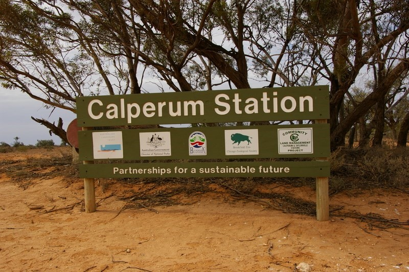 Rotary Club of Unley visit to Calperum Station in February 2018.