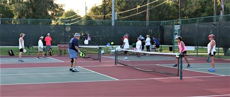 Rotary Pickleball Game Playing