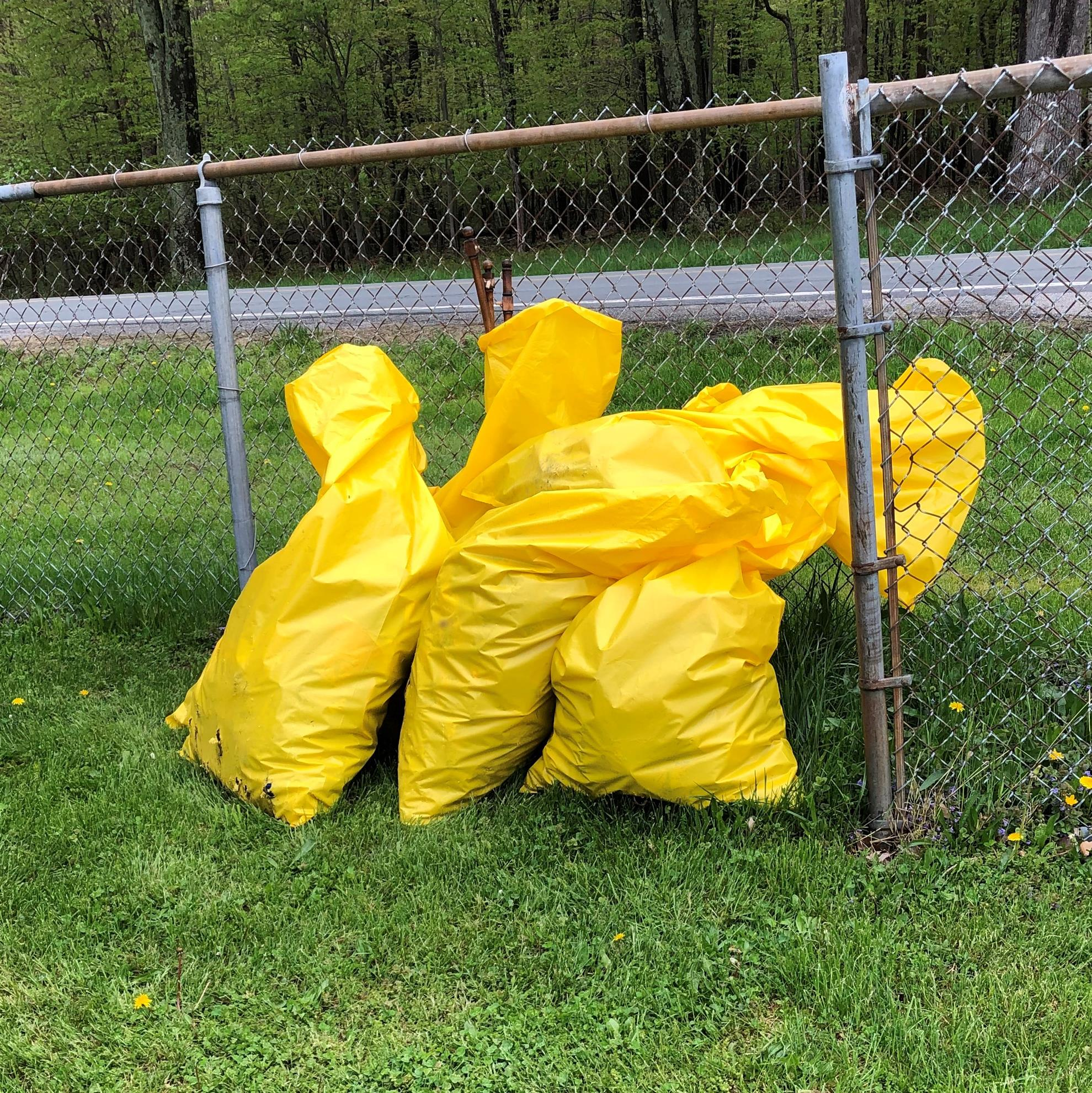 Annual Craigville Road Cleanup 2019