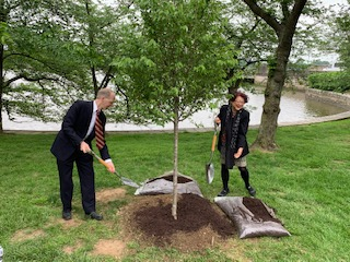 Spring Tree 🍃 Planting Ceremony | Rotary Club of Washington, DC