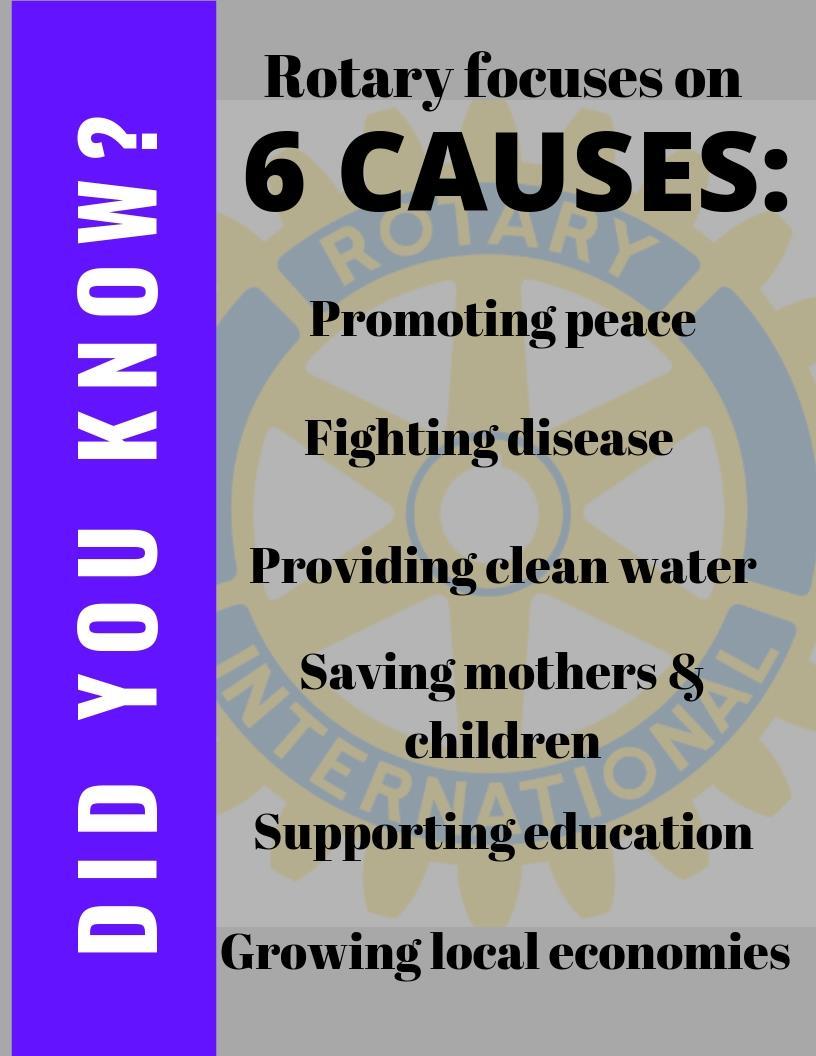 Stories   Rotary Club of El Segundo