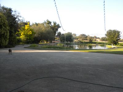 Doll Pond