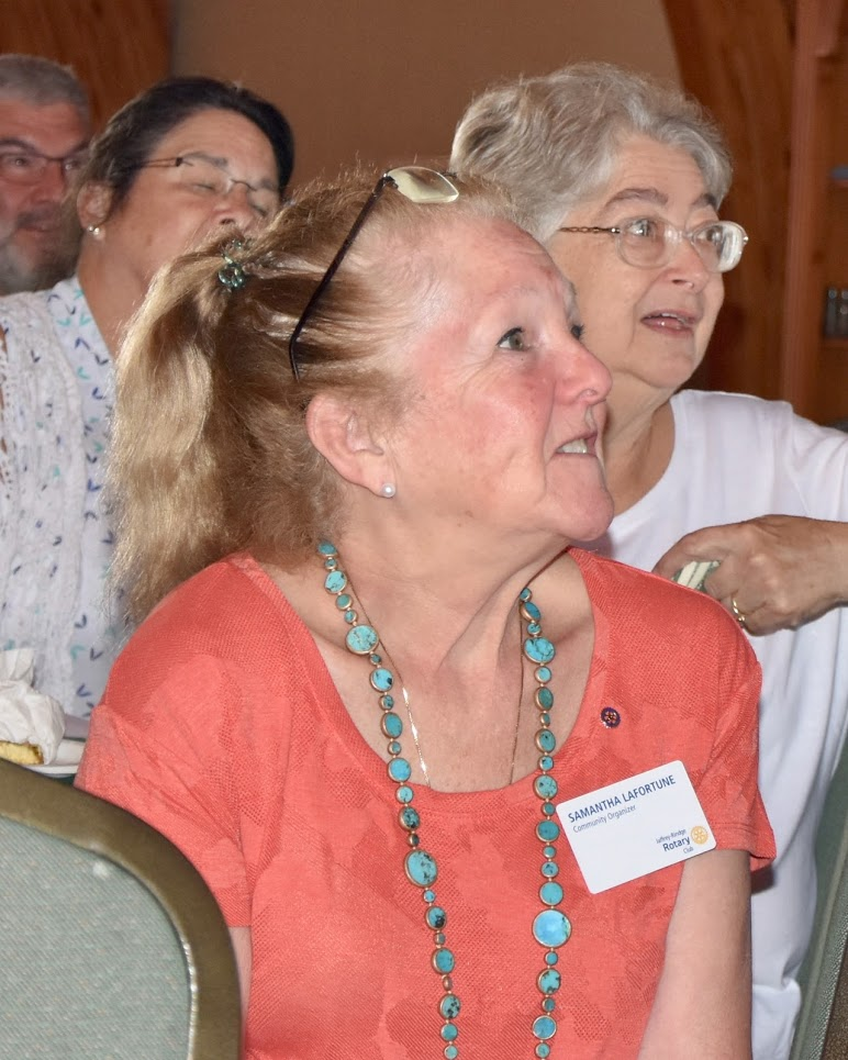 d1a2786665870 Stories | Rotary Club of Jaffrey-Rindge