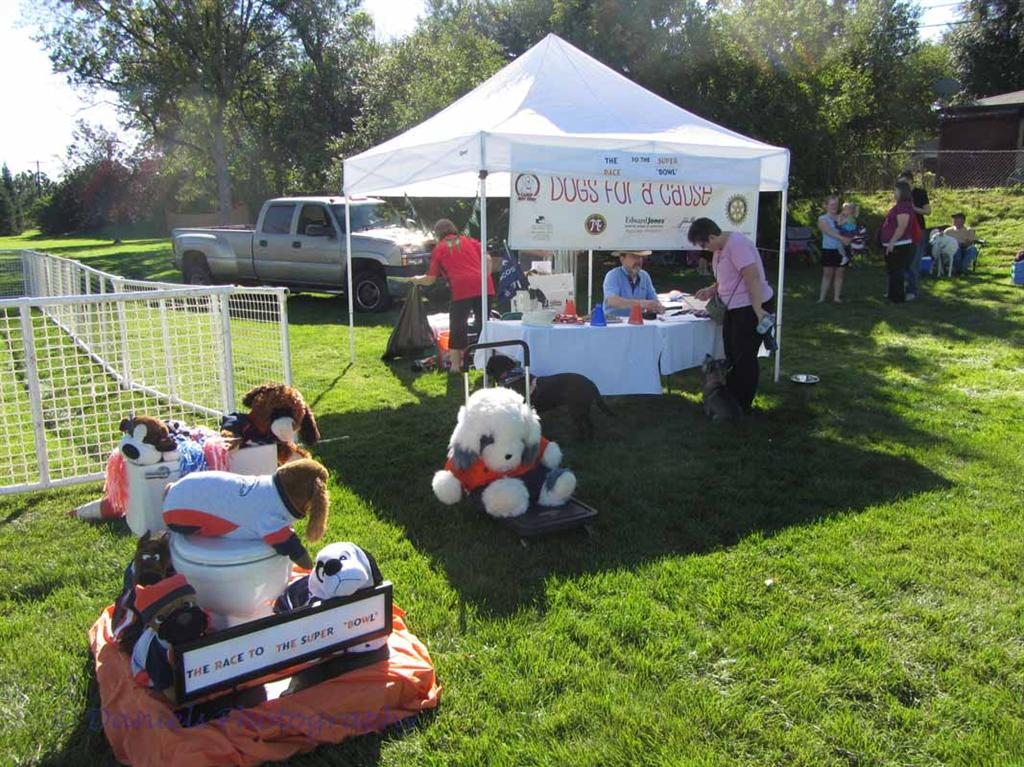 Dogs for a Cause 1
