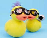 Duck Race 2020