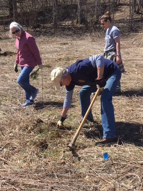 Earth Day Planting Trees | Cortland Rotary Club