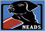 Neads Dog