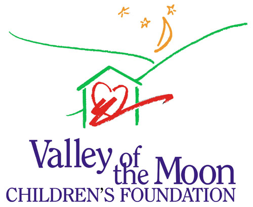 Emergency foster home blue bag wish list 2017 rotary for Moon valley motor care
