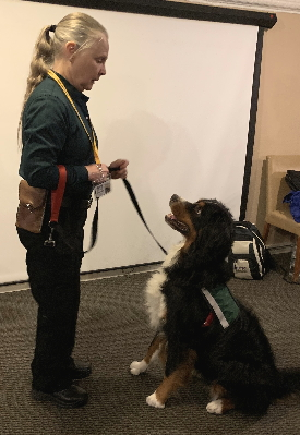 cb2b66e908674 Chris Bridge and Mia are a crisis response team certified through HOPE  Animal Assisted Crisis Response (AACR). HOPE AACR is a national