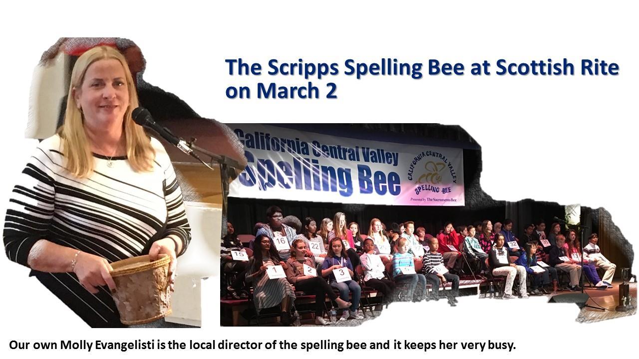Scripps spelling bee rotary club of north sacramento