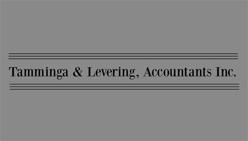 Tamminga and Levering Accountants