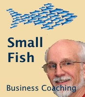 Small Fish Business Coaching