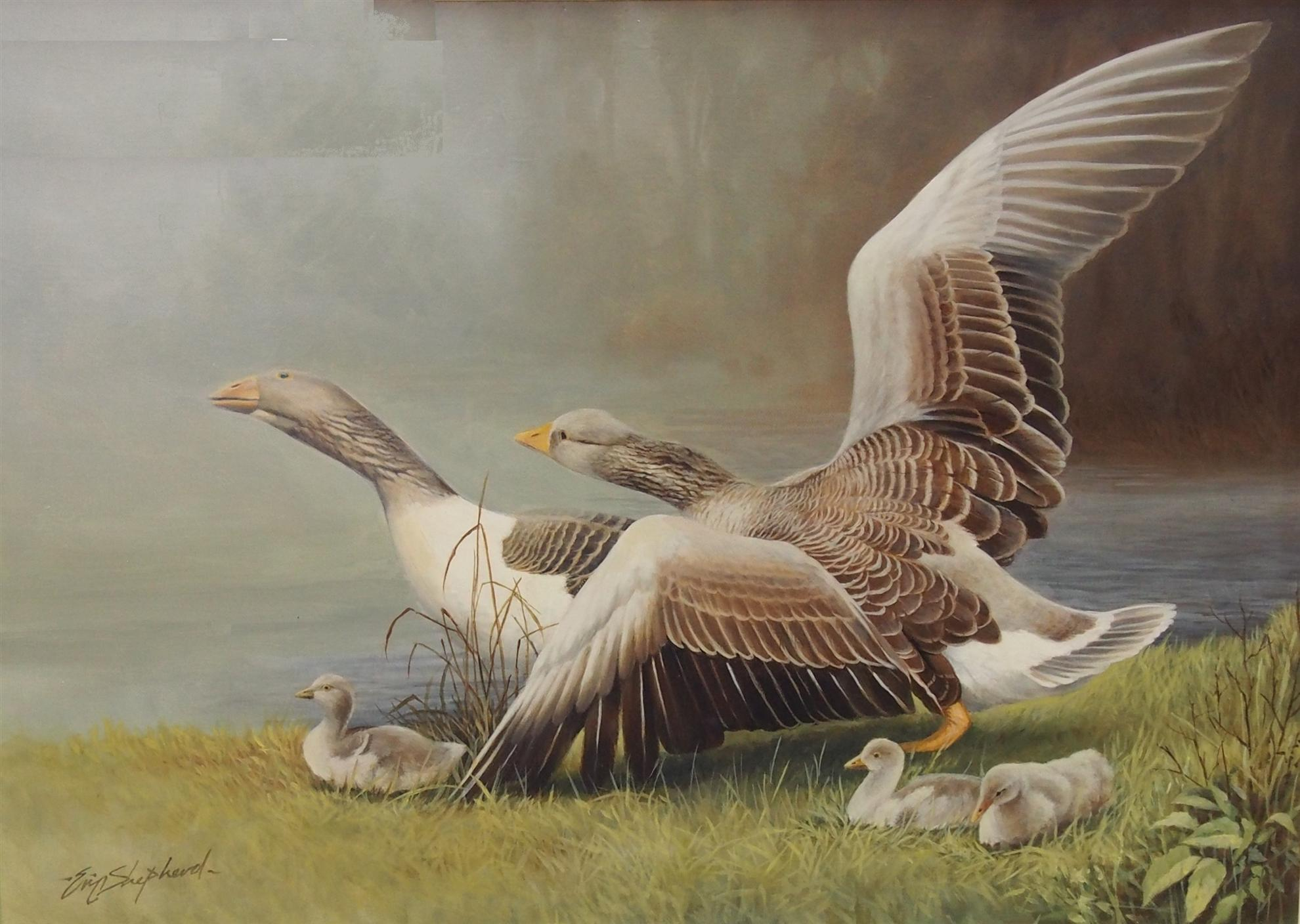 2014 Mornington Art Show - Best Oil Painting Award | Rotary Club of ...