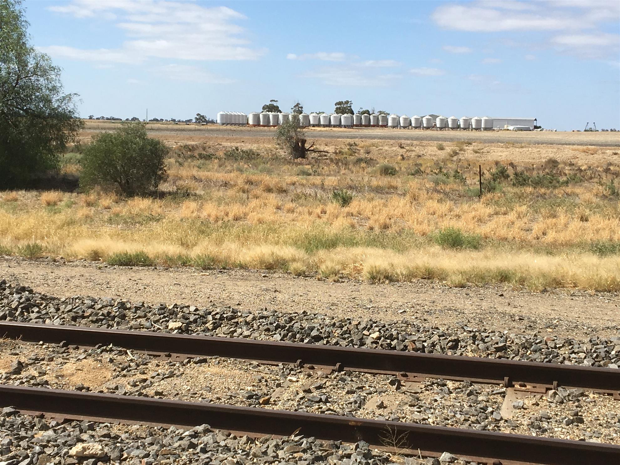 Modern grain storage silos