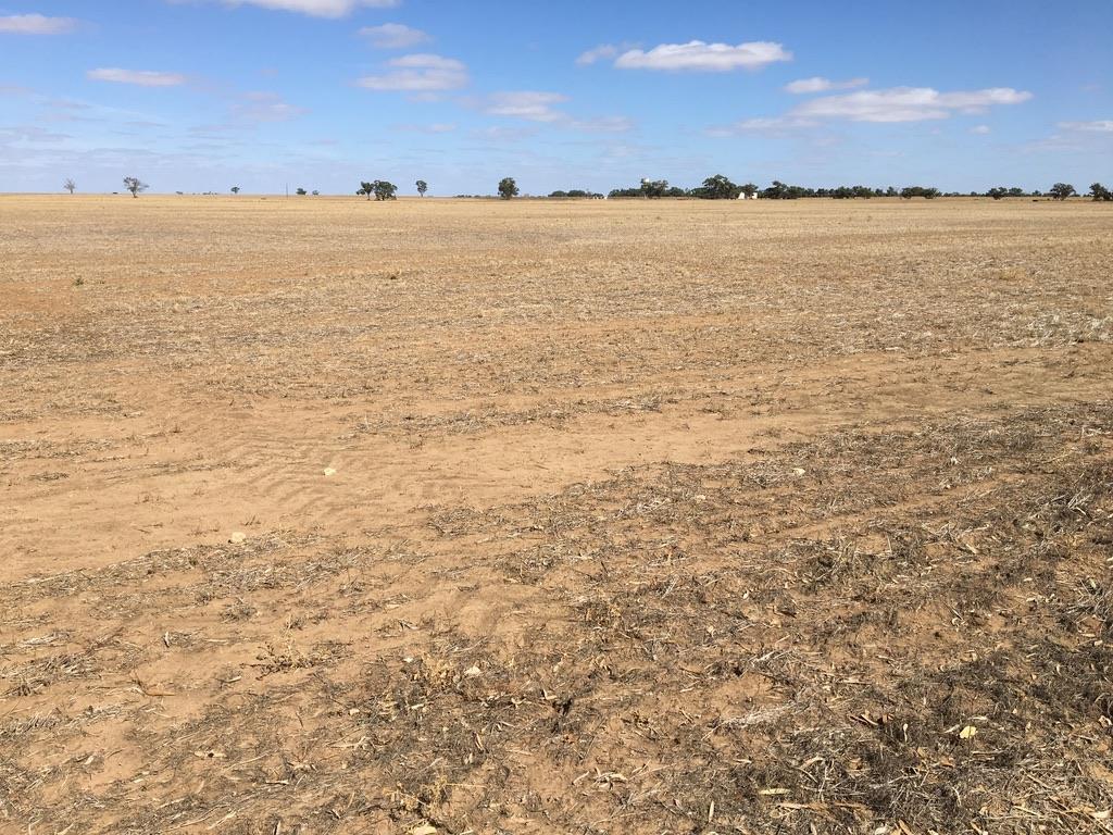 The dry land - wheat belt