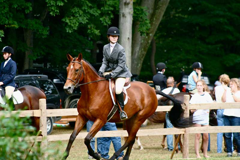Peekskill Rotary Horse Show @ Blue Mountain Reservation | Peekskill | New York | United States