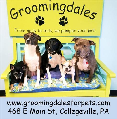Groomingdales