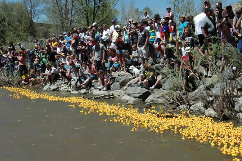 2014 Ducky Derby Race - start