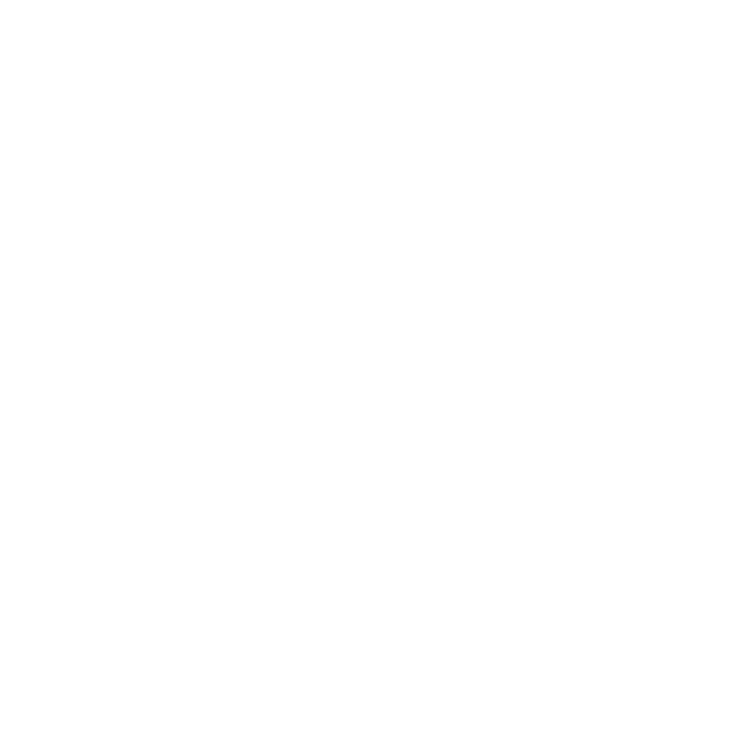 Northwest Austin logo