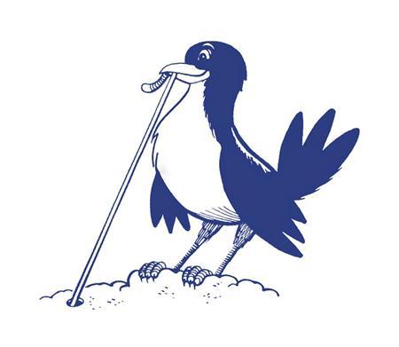 Sheboygan Early Birds