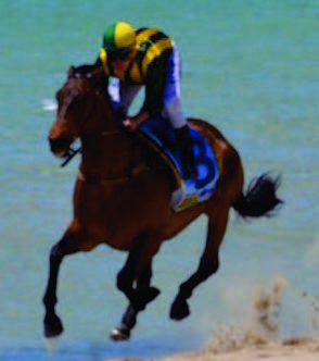 Rockingham Beach Cup Race Day 2016 | Rotary Club of Palm Beach