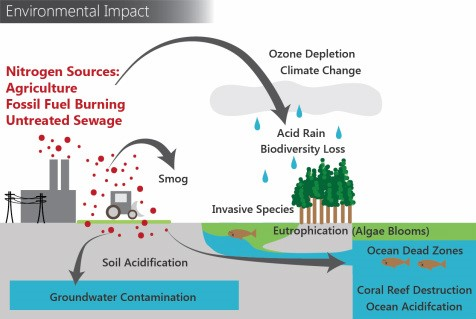 causes effect and preventive measures of ozone depletion