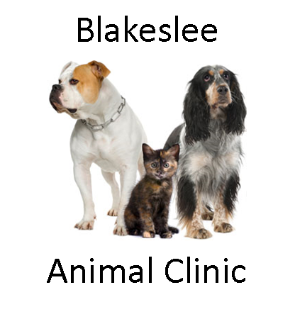Blakeslee Animal Clinic