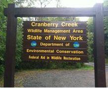 Cranberry Creek