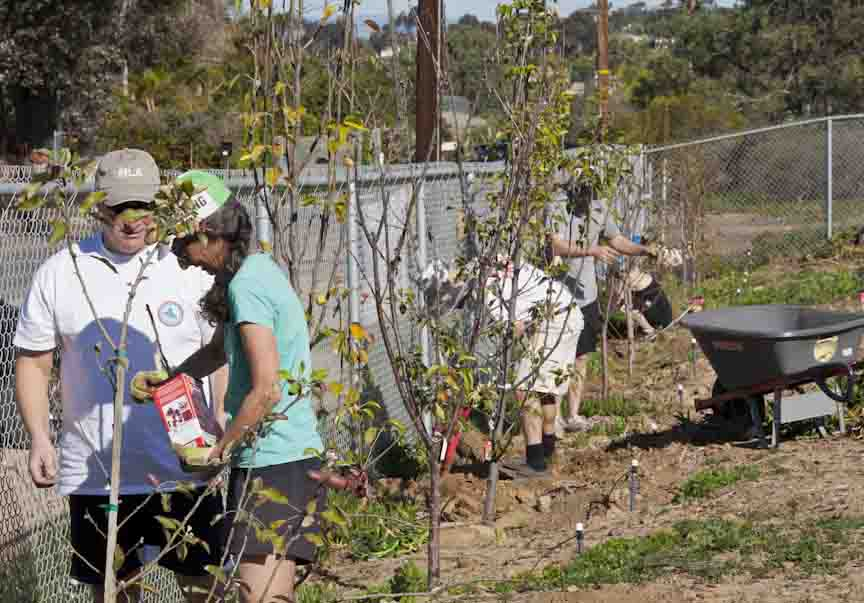 Food Justice Orchard