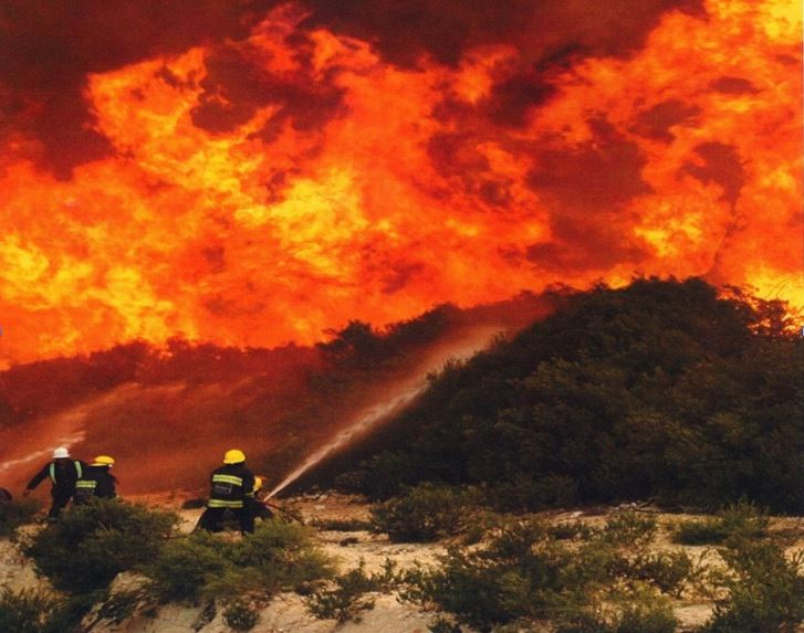 Wildfires are an all too common occurence in the Western Cape