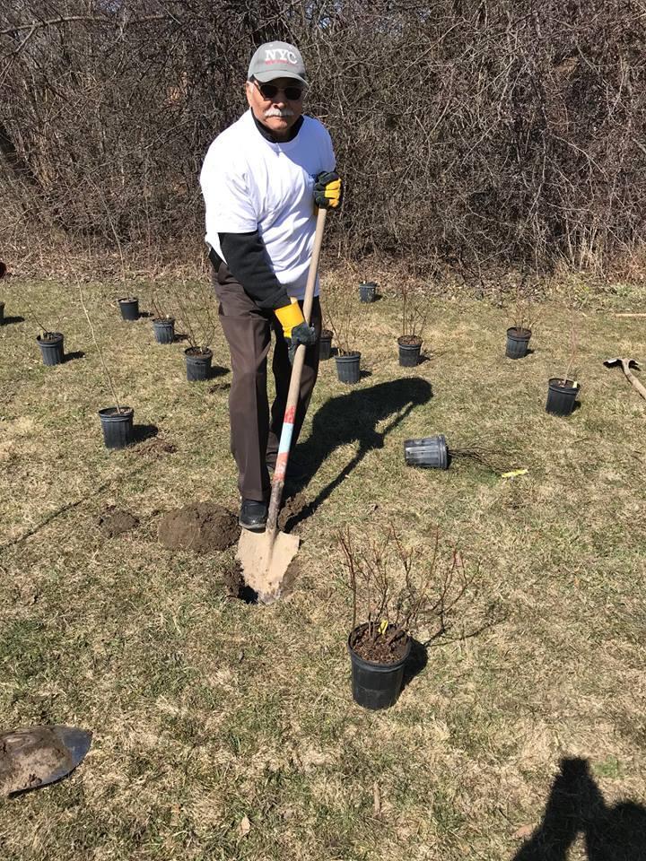 RC Mississauga South Hashim Taqvi planting a tree