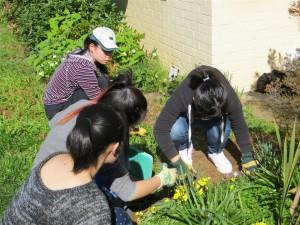GardenProject