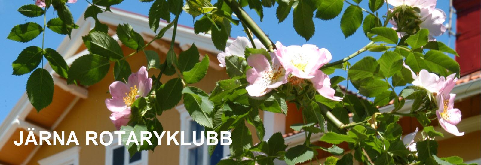 Skavehuset-järna-RK.jpg
