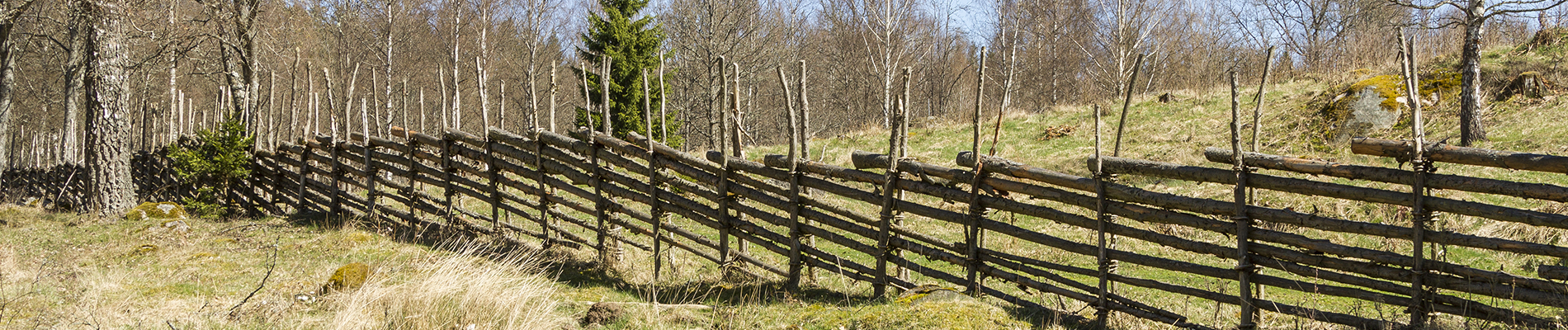 staket.png