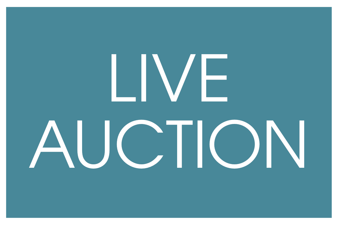 Check out the live auction items at the foundation for How to bid at a live auction
