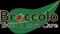 Broccolo Logo