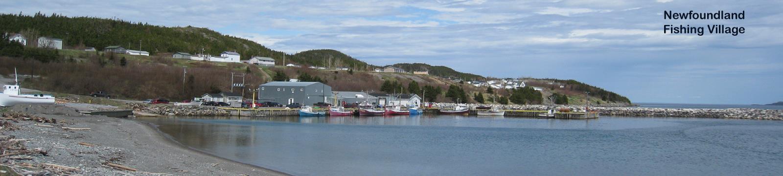 Newfoundland Fishing Village